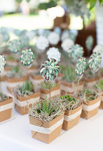 Succulent table seating