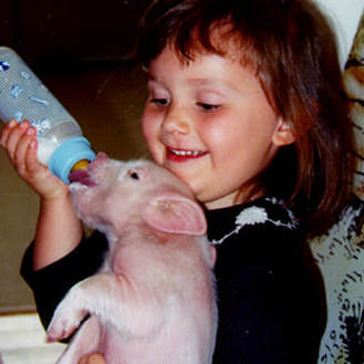 Childrens Farmyard Birthday with little pig guest